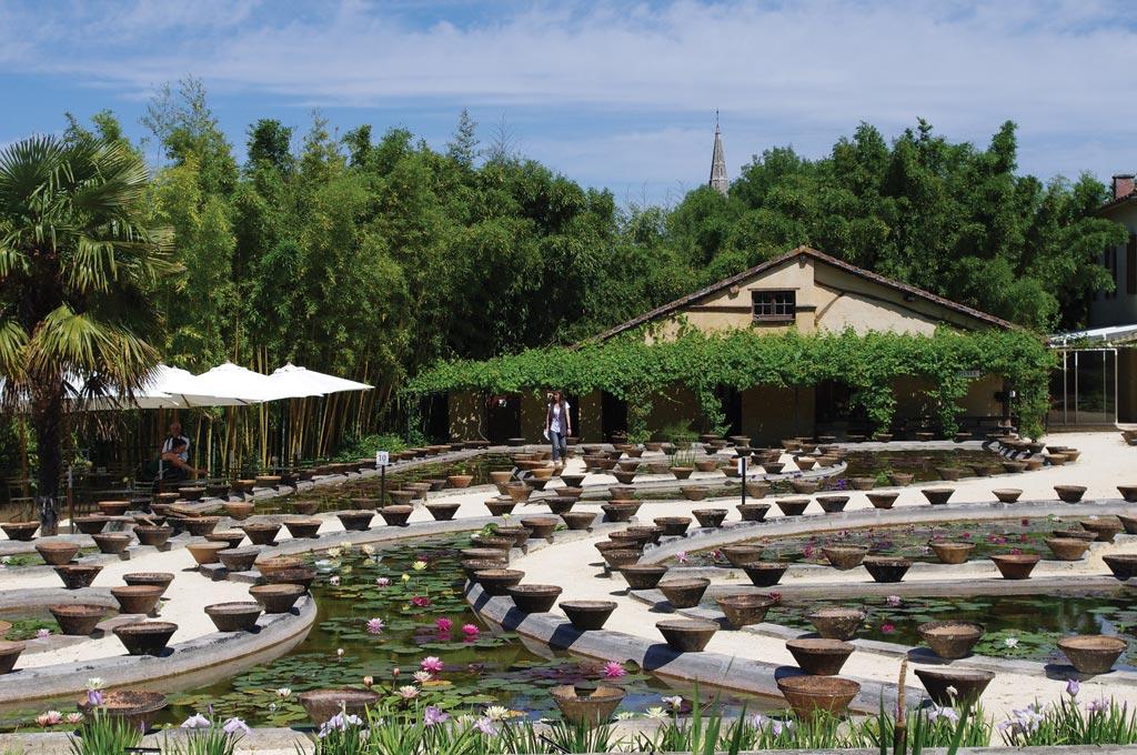 Latour marliac le jardin des n nuphars jardins parcs - Jardin des nenuphars le temple sur lot ...