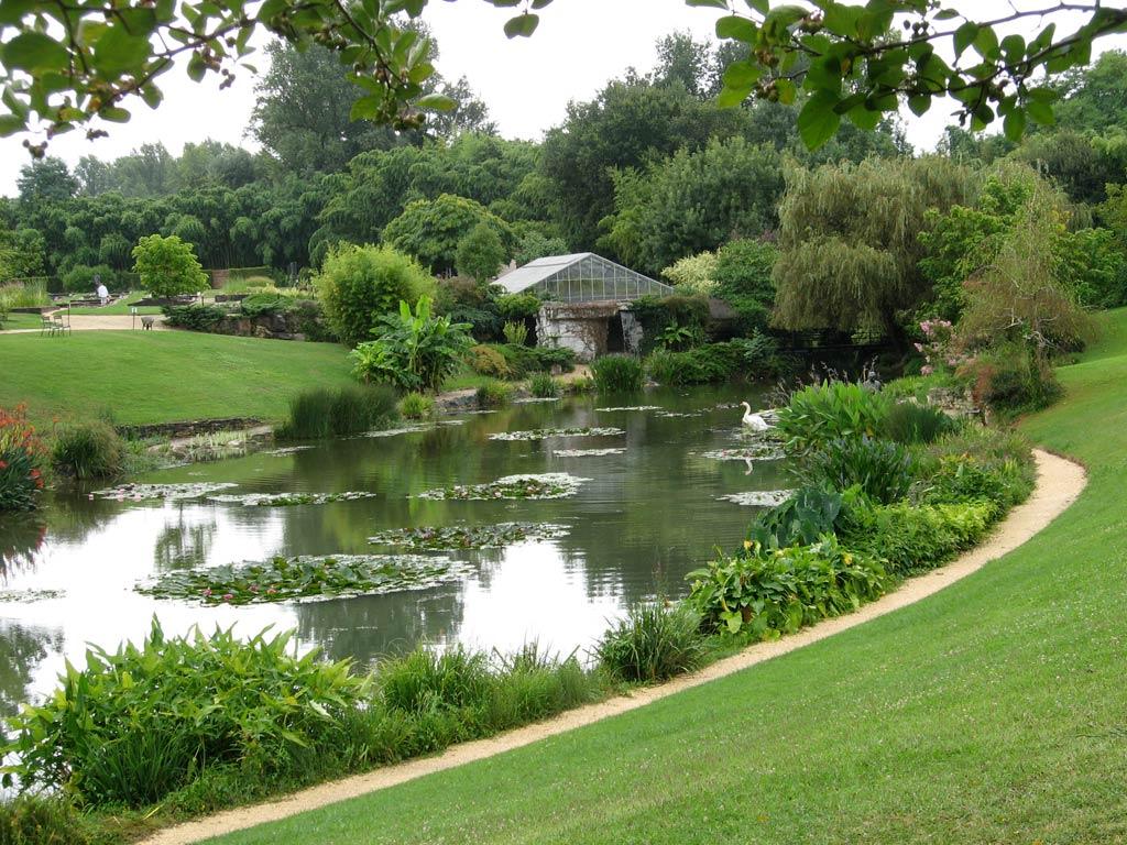 Latour marliac le jardin des n nuphars jardins parcs for Aire jardin des causses du lot