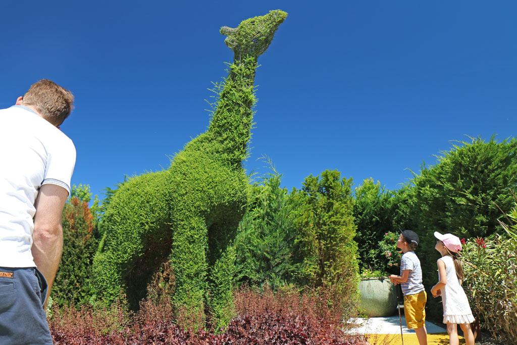 La girafe en buis !